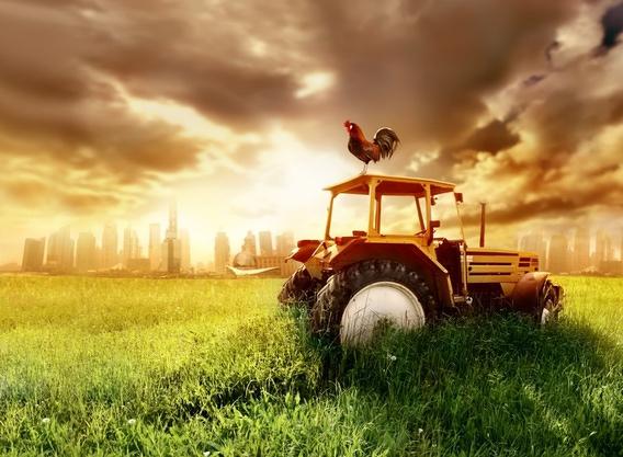 www.meine farm.de